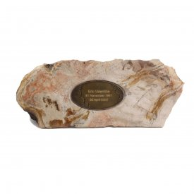 Fossilised Memorial Stone Single